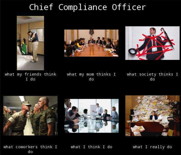 Chief Compliance Officer What my friends think I do